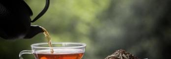 تحضير الشاي باستخدام ماء الصنبور أم المعبأ؟ تعرف على الأكثر فائدة