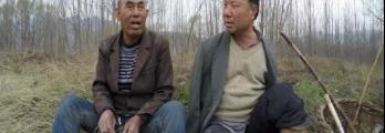 بالفيديو... رجل أعمى وآخر مبتور الذراعين زرعا غابة
