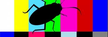 حقائق علمية مُزعجة حول الصراصير