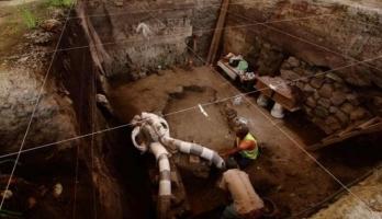 اكتشاف ماموث مكسيكي وزنه 10 أطنان مات قبل 12 ألف عام