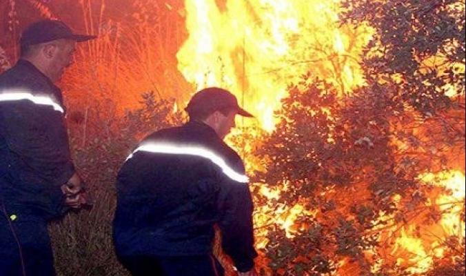 الحرائق الهائلة تواصل تمددها السريع في كاليفورنيا