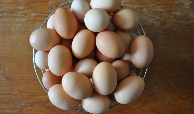 ما الذي يحدث اذا لم نضع البيض في الثلاجة