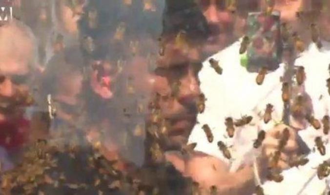 بالفيديو.. صاحب الرقم القياسي في تحمل لسعات النحل