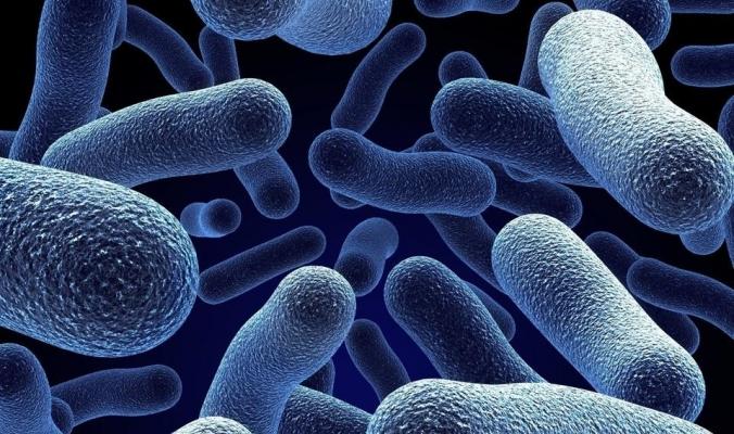 قريباً نستغني عن فحوص المختبر.. جهاز يكتشف البكتيريا