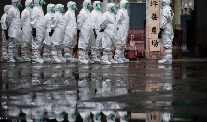 حمى الخنازير الأفريقية تتفشى في إقليم جديد بالصين