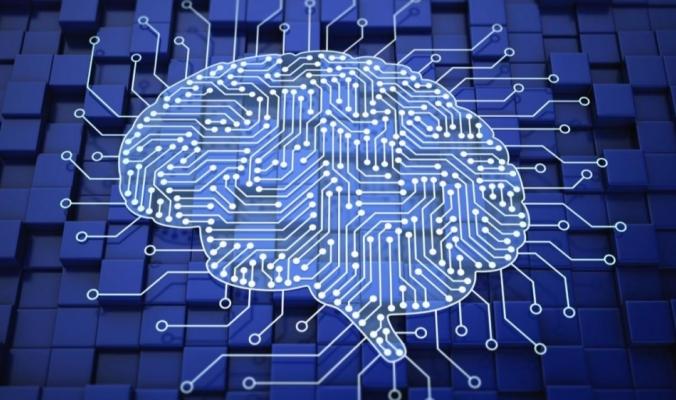 ما هي النسبة المستخدمة من الدماغ البشري؟