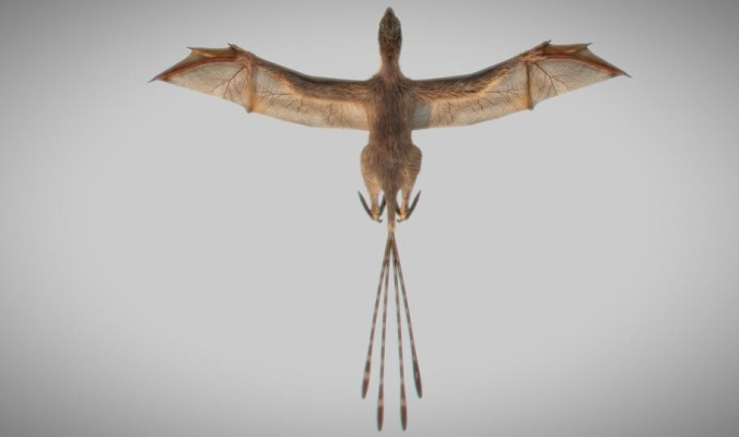 """ديناصور كالخفاش """"غير نظرتنا كلياً"""" عن الطيران"""