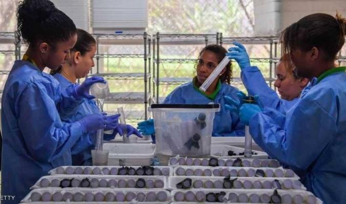مسؤول: الفيروسات الجديدة والأوبئة في مستويات غير مسبوقة