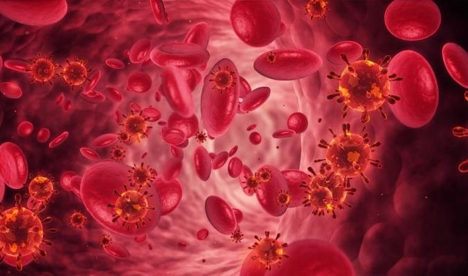 دراسة تنسف كل ما نعرف عن كورونا.. هكذا يقتل خلايا الجسم