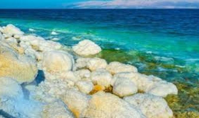 هل البحر الميت .. ميت حقًا ؟