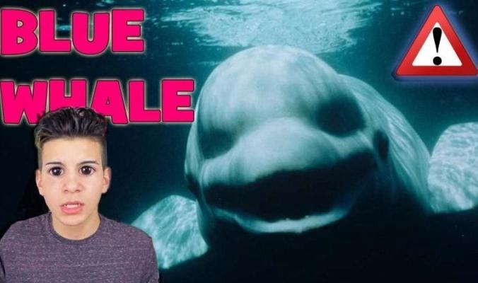"""لعبة """"الحوت الأزرق"""" تقتل طفلاً !! يرجى الانتباه والحذر ..."""