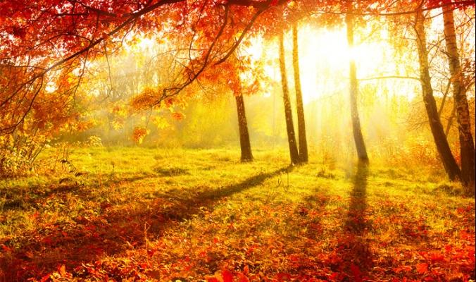 فصل الخريف يبدأ الأحد القادم