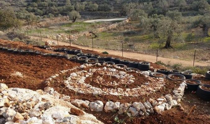 """الإعلان عن """"فرخة"""" أول قرية بيئية في الضفة وغزة بلا مدخلات كيميائية"""
