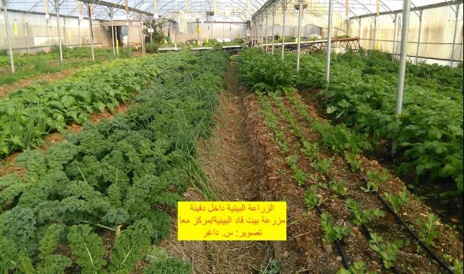 رسالة زراعية بمعانٍ إنسانية