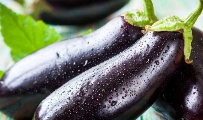 هل تكره الباذنجان ؟ «فاكهة الحب» ستغير حياتك.. هذه فوائدها