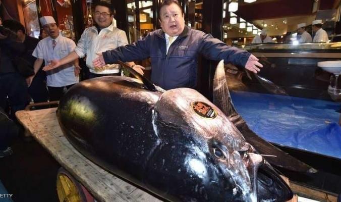 """""""سعر خيالي"""" لأغلى سمكة تونة في التاريخ"""
