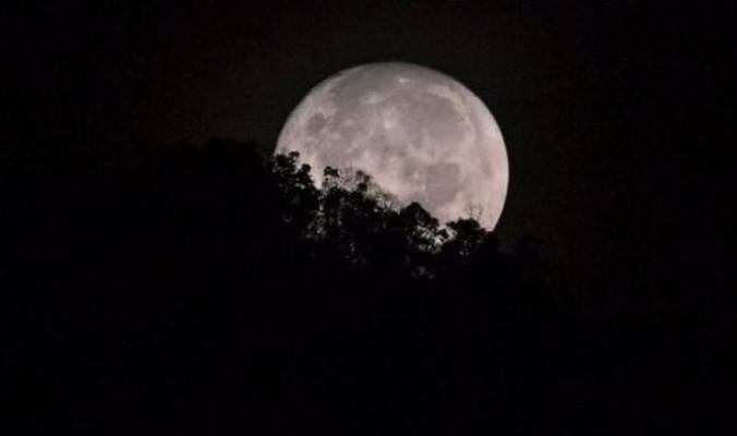 شركة أمريكية تخطط لرحلة سياحية حول القمر العام المقبل