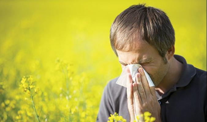 نصائح عملية لمواجهة الحساسية الربيعية