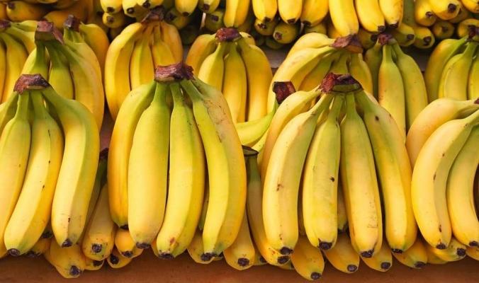 الموز قد ينقرض قريبا وقد حدث ذلك من قبل