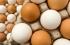 اتضح أننا نتبع طريقة خاطئة... أسرار بسيطة لطهي بيض مقلي مثالي