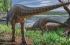 """الديناصورات ليست كلها عملاقة بعضها كان بحجم """"الديك الرومي""""! اكتشاف حفريات تؤكد أن الأرض كا ..."""