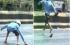 بعد وصول درجات الحرارة الى مستويات خمسينية ... بالفيديو الشوارع في الهند بدأت بالذوبان