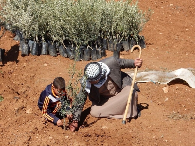 """حملات تخضير فلسطين: """"حساب البيدر وحساب الحقل"""""""