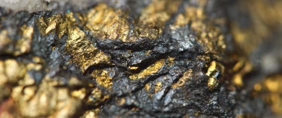 """""""فضلات"""" السويسريين تحتوي على 43 كيلو ذهب و3 آلاف كيلو فضة سنوياً."""