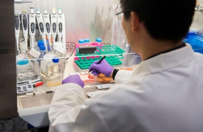 """ماذا نعرف عن الكلوروكين في معالجة وباء """"كوفيد-19""""؟"""