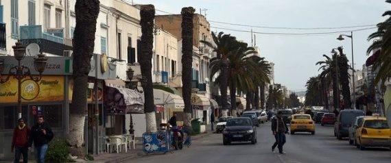 """""""الرعب الأحمر"""" يهاجم 5 ملايين نخلة في تونس"""