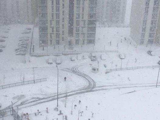 القطب المتجمد الشمالي يحل محل اسطنبول!!