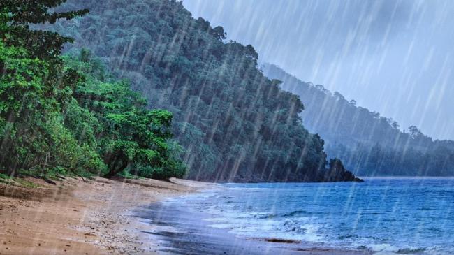 لماذا يتمتع المطر برائحة جميلة وجذابة؟
