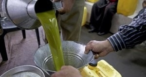 كيف نكتشف إذا كان زيت الزيتون مغشوشاً أو جيداً؟
