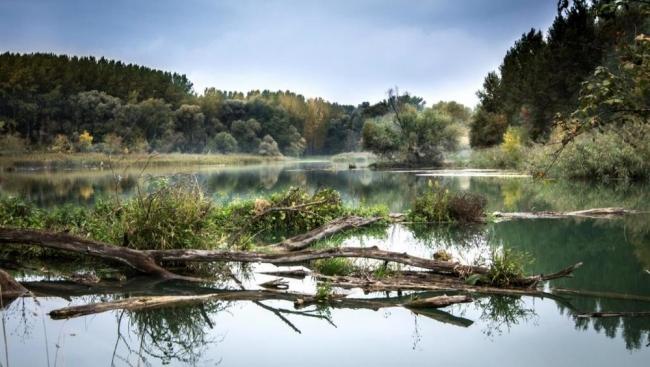 السدود وخزانات المياه تقطع جريان ثلثي أنهار العالم