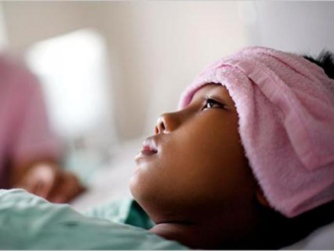 %40 من سكان العالم معرضون لخطر الإصابة بحمى الدنج