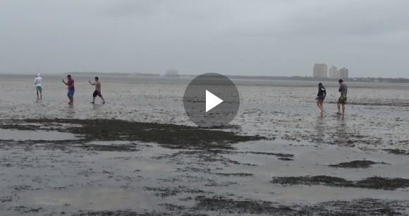 """فيديو صادم ...إعصار #إيرما يبتلع مياه مدينة """"تامبا"""" في فلوريدا وسط ذهول السكان"""