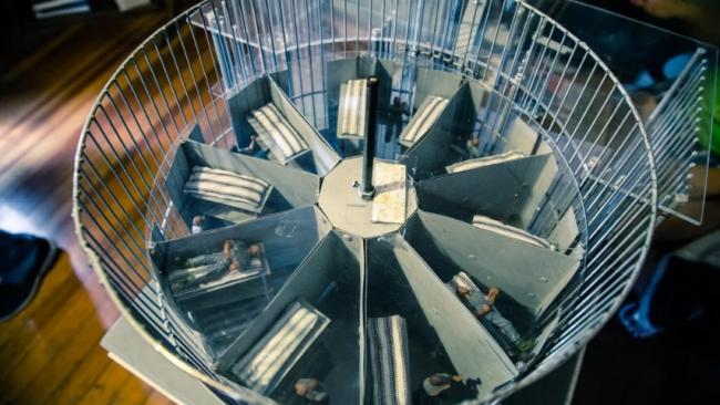 ما رأيك بالتعرف على السجون الدوّارة وقصة بنائها!!