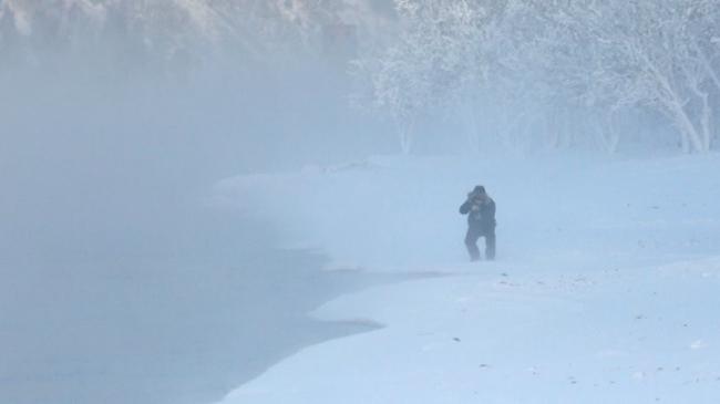 إعلان حالة الطوارئ لمواجهة دببة قطبية روسية