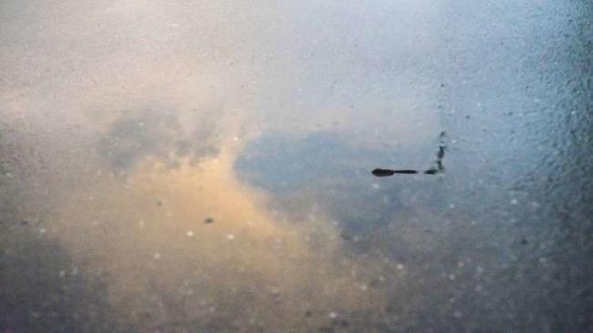 بالفيديو... الأمطار الغزيرة تُغرق ضوحي القاهرة الراقية