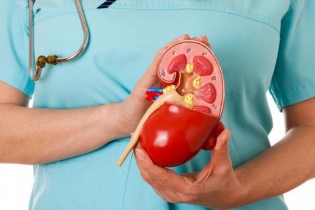 مؤشرات على الإصابة بسرطان الكلى.. لا تتجاهلها!