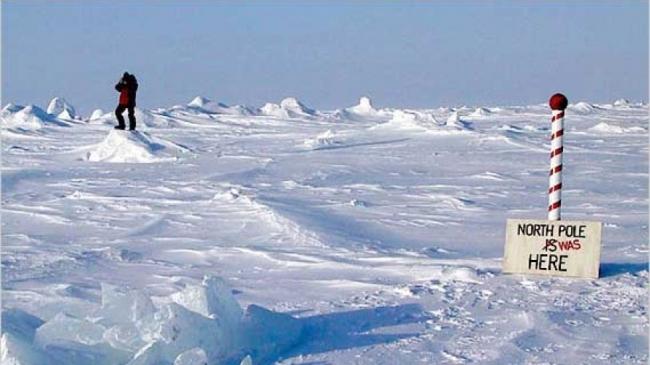 5 معلومات خاطئة حول القطب الشمالي: حيث لا تعيش البطاريق