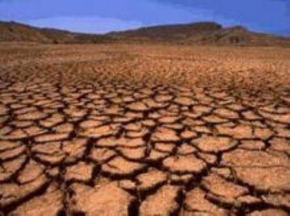 الصحراء ستأكل الأخضر واليابس وأكثر من مليار إنسان يعانون من التصحر الشديد في العالم