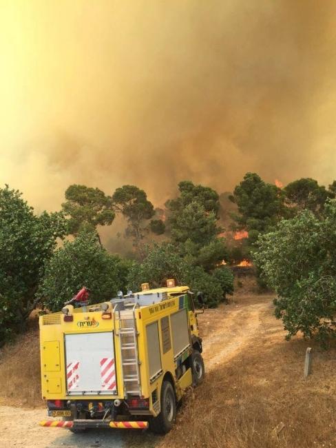 حريق كبير في صفد شمال البلاد ..والإحتلال يخلي عشرات المنازل