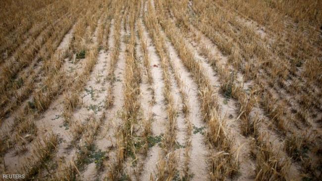 الجفاف يضرب جنوب أوروبا في أسوأ موجاته منذ عقود