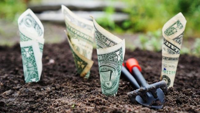 تحتاج إلى دخل إضافي؟ إليك 9 طرق لكسب المال بسرعة