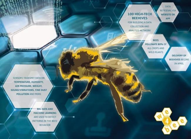 ما علاقة مايكروسوفت بالذكاء الاصطناعي وعالم النحل؟