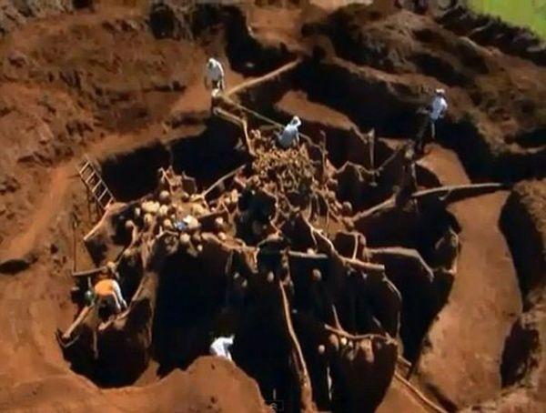 مدينة وطرق وحدائق النمل تحت الأرض ... أعجوبة سور الصين العظيم لدى النمل.. .بالصور والفيديو