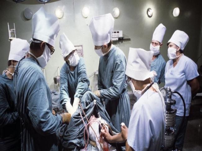 أول هجين مشترك بين البشر والأغنام لزراعة الأعضاء