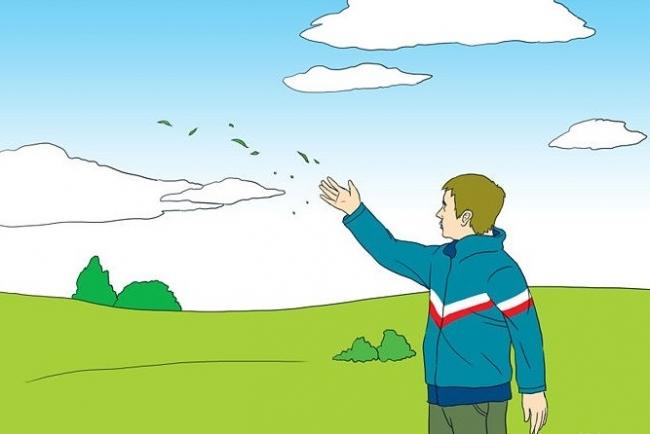 4 وسائل غريبة للتنبؤ بأحوال الطقس