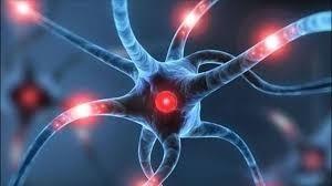 ما هي غازات الأعصاب وماذا تفعل لجسمك؟